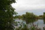 claude_11_20120926_1584117646